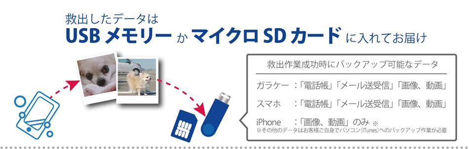 救出したデータはUSBメモリーまたはマイクロSDカードに入れてお届けします